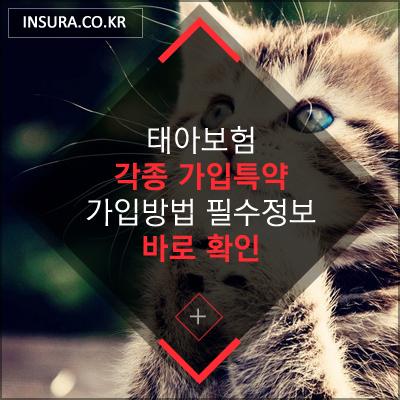 f41a9675a00319cbda3847b36c3bec6a_1564619